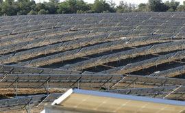Planta Solar Francia, Axial France